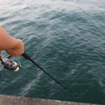キャンプ場から歩いて10分!館山の見物堤防で釣りに挑戦!